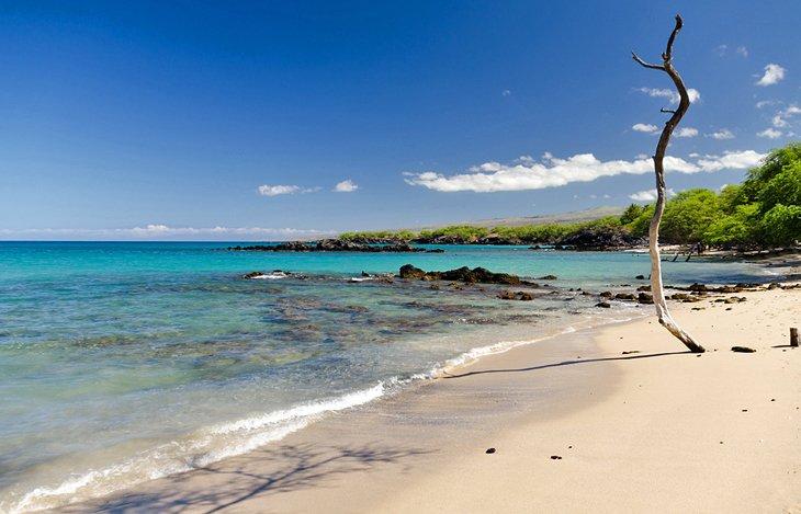 Playa de Waialea