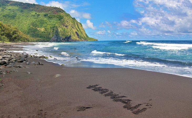 Playa de arena negra de Waipi'o