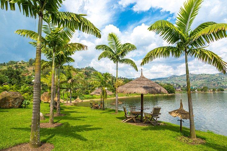 Palm-lined shores of Lake Kivu