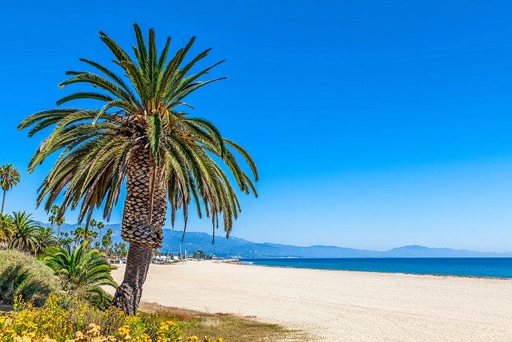 Playa Leadbetter, Santa Bárbara