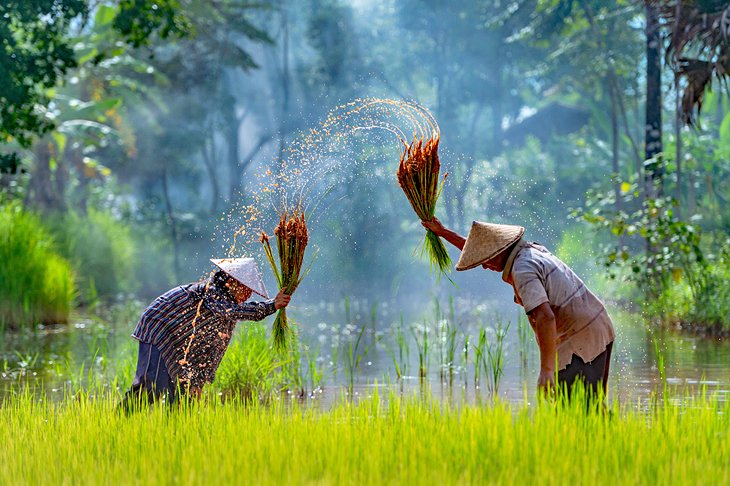 Best Time to Visit Cambodia | PlanetWare