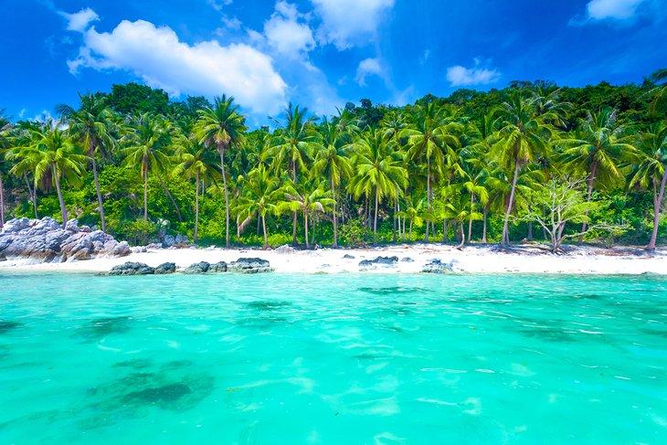 Пальмовый пляж на Самуи.