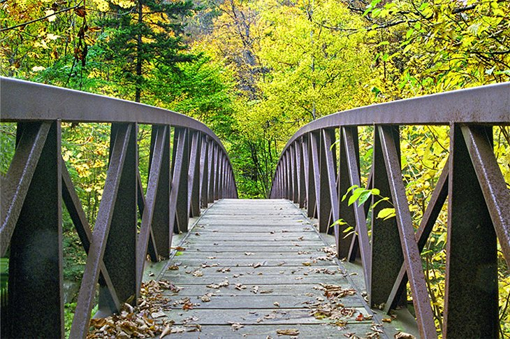Bridge on the Long Trail