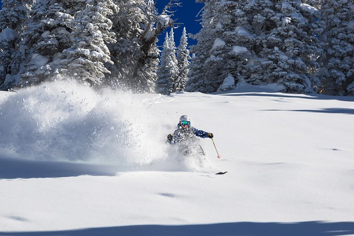 Skier at Jackson Hole