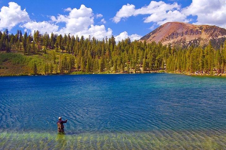 Pescador en la cuenca de Mammoth Lakes