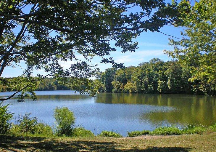 Lago East Fork