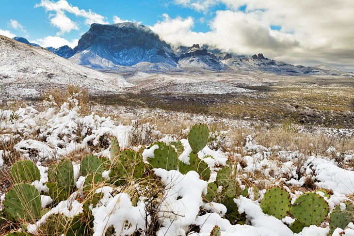 Snow in Big Bend National Park