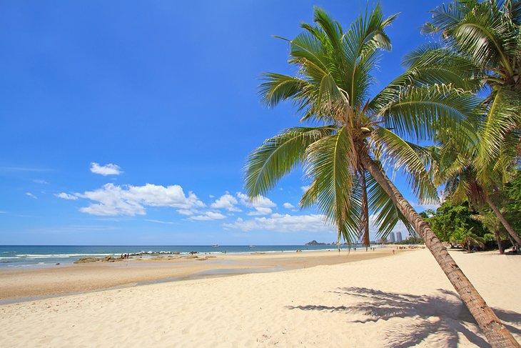 Кокосовые пальмы на пляже в Хуахине.