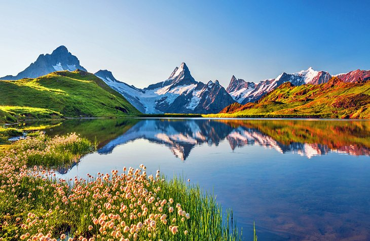 Swiss Alps reflected in Bachalpsee lake