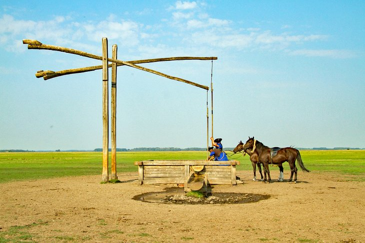 Traditional Hungarian horseman at a well in Hungary's Great Plain