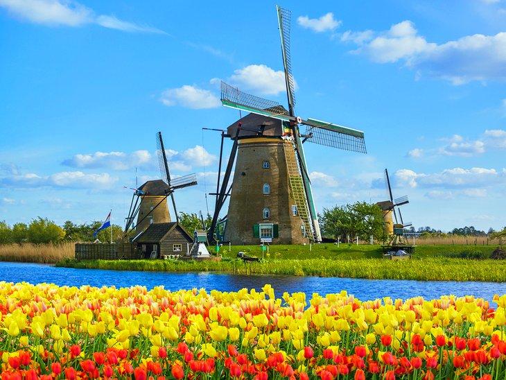 Classic spring scene in the Netherlands