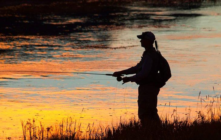 Pescador con mosca al atardecer cerca del Parque Nacional de Yellowstone.