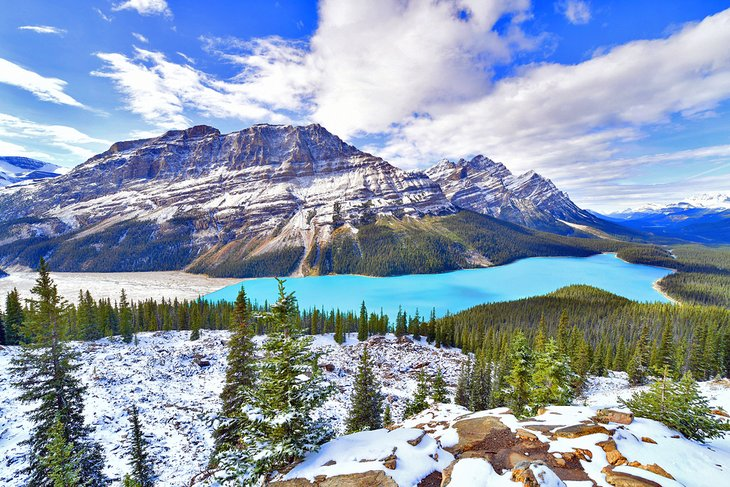 Lago Peyto en el Parque Nacional Banff