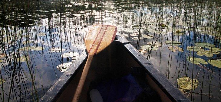 Canoa cerca de Sioux Narrows