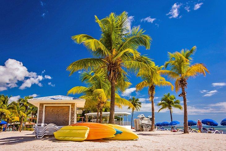 Пальмы и байдарки на пляже в Ки-Уэсте.