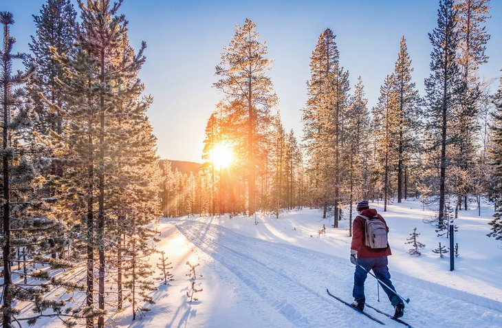 Cross-country skiing in Lapland