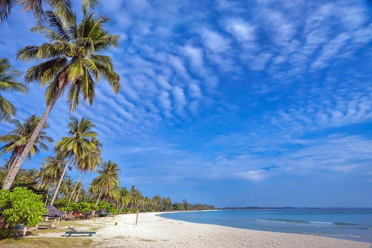 Playa de Trikora bordeada de palmeras
