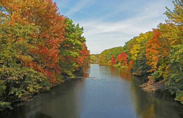 The Bronx River in the fall