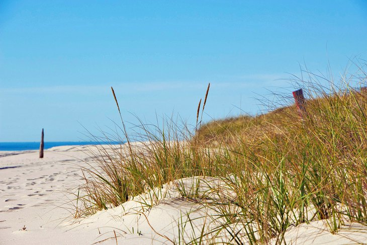 Playa Flying Point