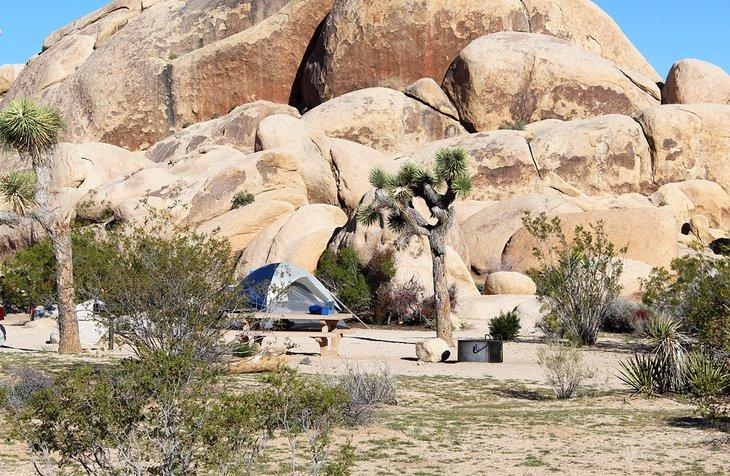 Campamento Belle
