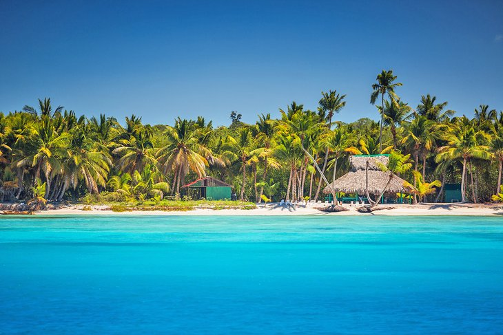 Palm-lined beach at Punta Cana, Dominican Republic