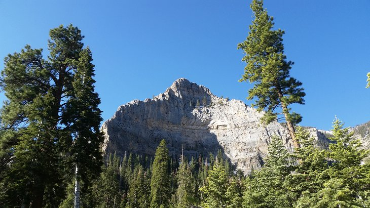 8 Best Campgrounds & RV Resorts near Las Vegas   PlanetWare