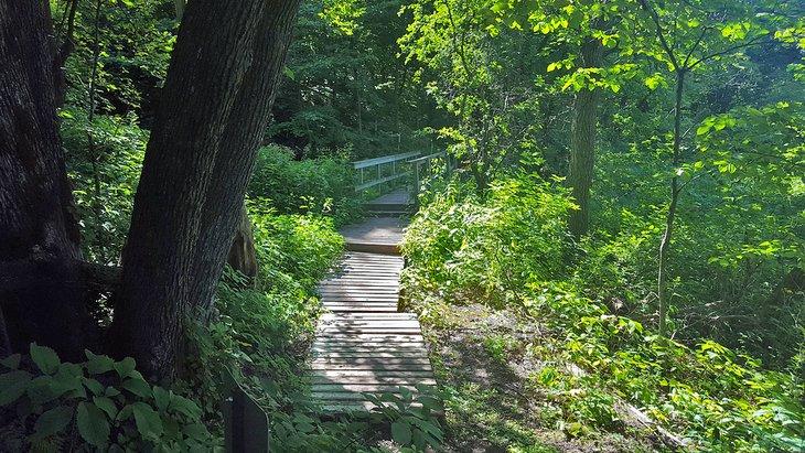 Camino en el Parque Estatal Sica Hollow