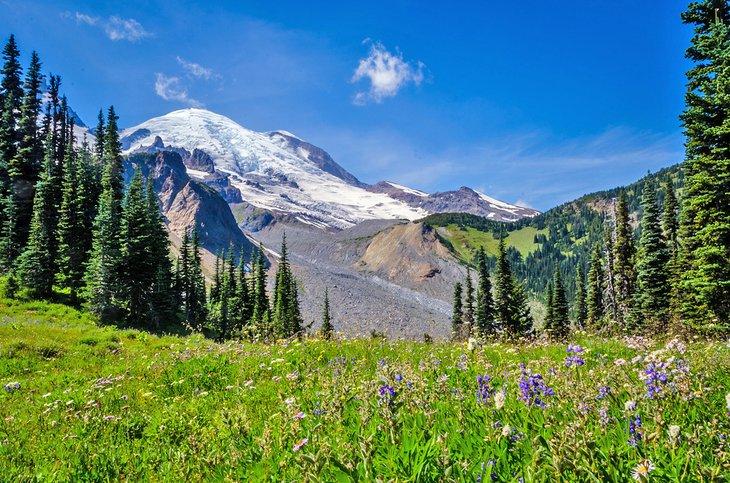 Monte Rainier desde Summerland