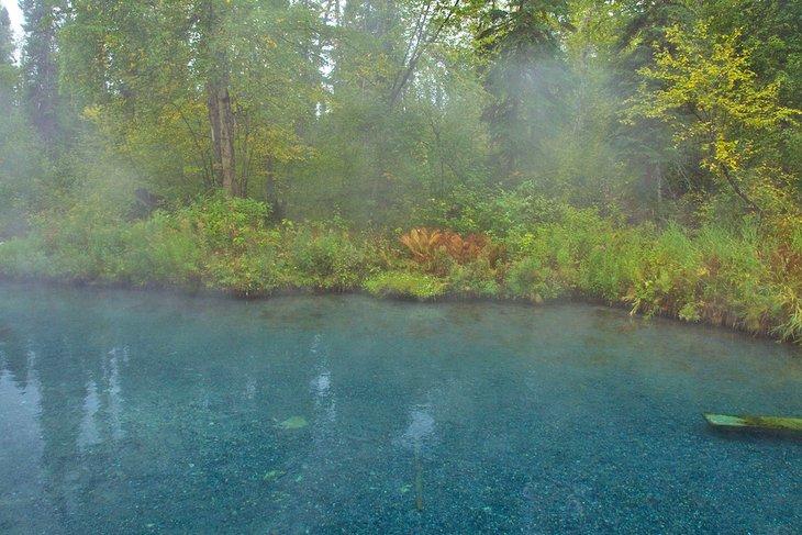 Vapor saliendo de una piscina en Liard River Hot Springs