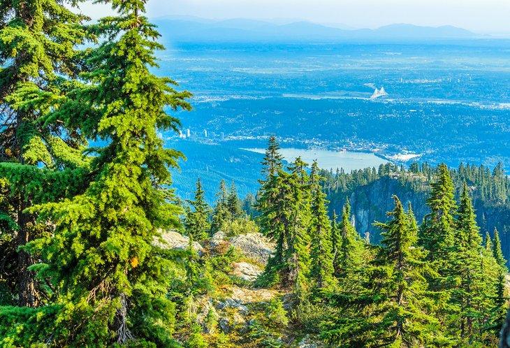 Vista desde el Parque Provincial Mount Seymour