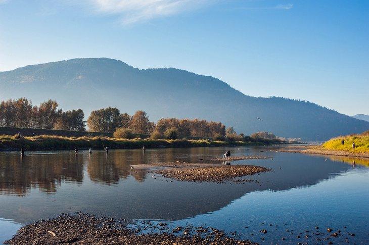 Pescador en el río Vedder