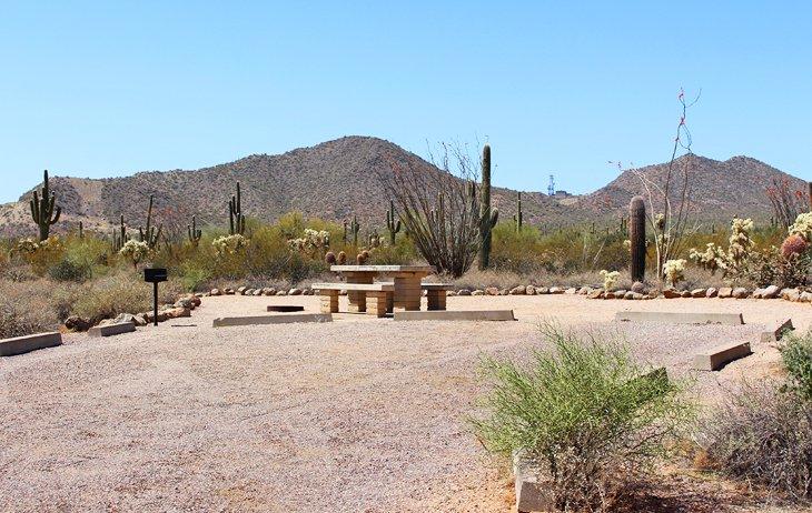 Camping del Parque Regional de Usery Mountain
