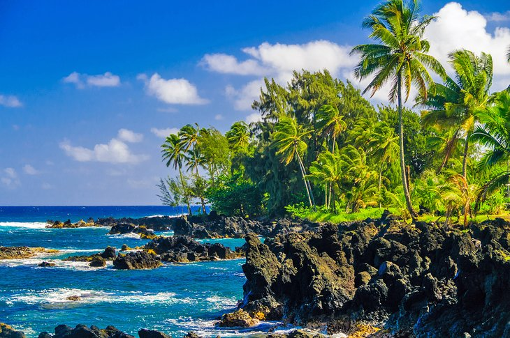 Best Time to Visit Hawaii  PlanetWare