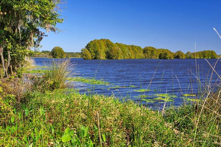 Parque estatal Lake Talquin
