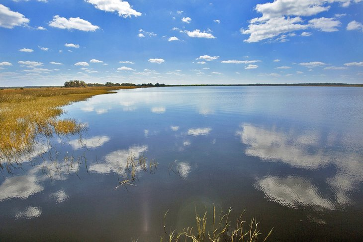 Lago Tohopekaliga