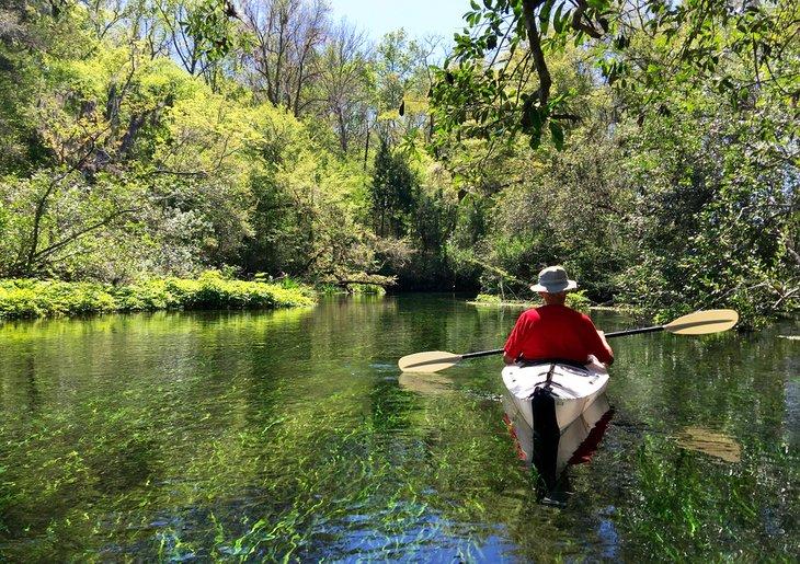 Kayakista disfrutando de Ichetucknee Springs