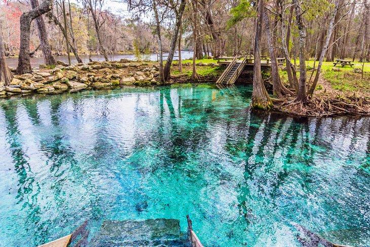 Parque Estatal Madison Blue Spring