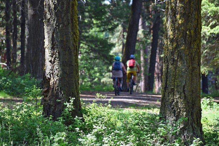 Ciclistas disfrutando de un paseo por el Parque Estatal Ponderosa