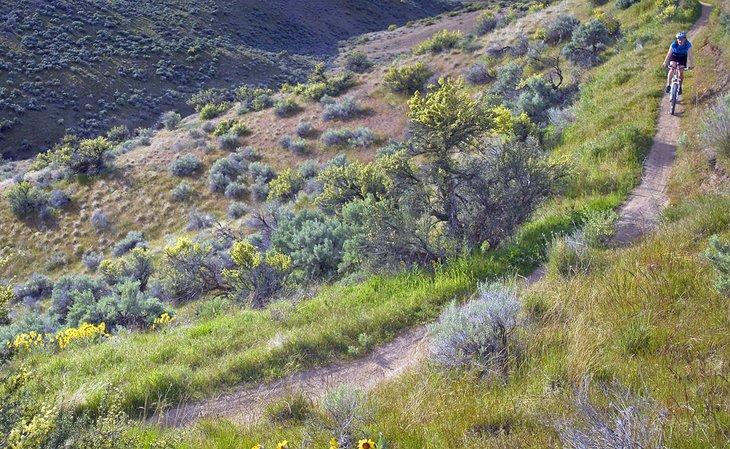 Ciclista de montaña en el Polecat Loop Trail