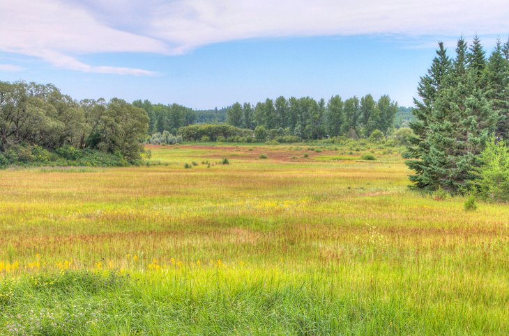 Parque Provincial Birds Hill