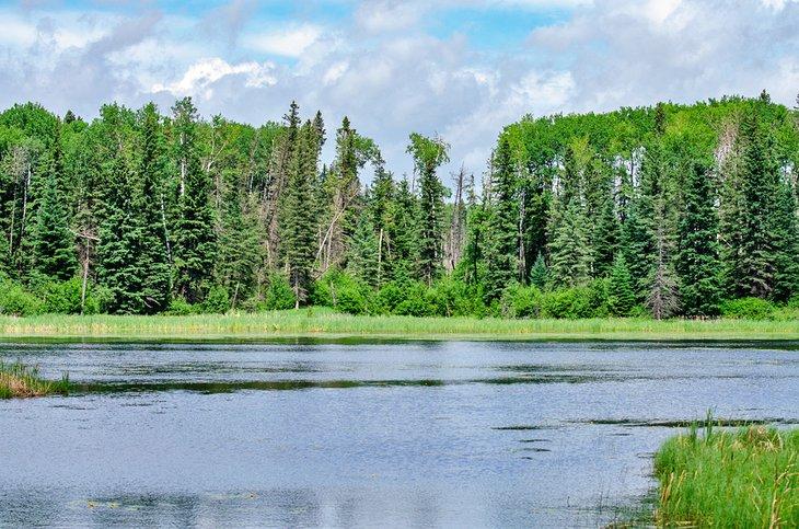 Lago Hickey en el Parque Provincial Duck Mountain