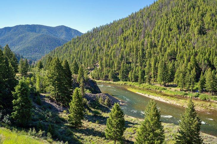 Río Salmon en el Bosque Nacional Salmon-Challis