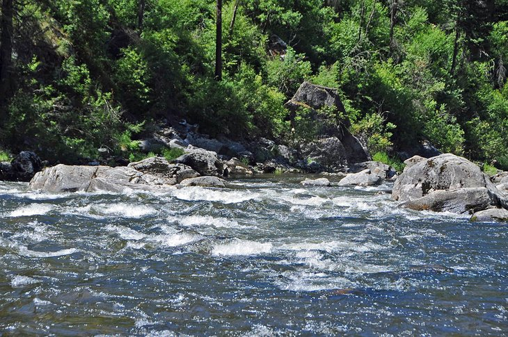 Rápidos en el río Clearwater