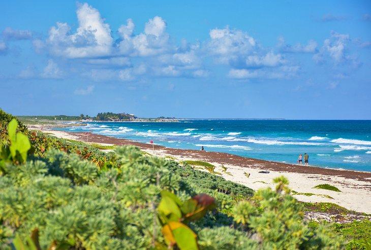Playa Punta Morena