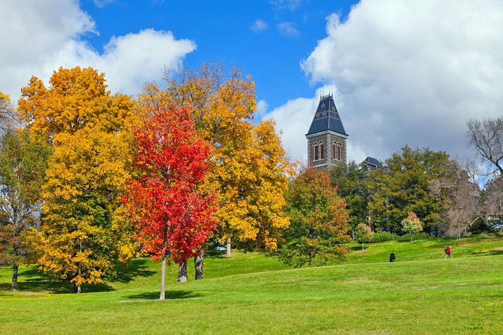Fall colors at Cornell University in Ithaca