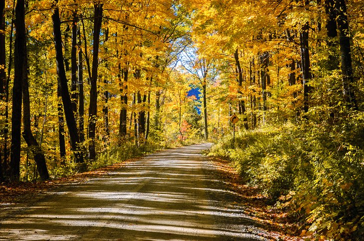 Driving through the Allegany State Park in autumn