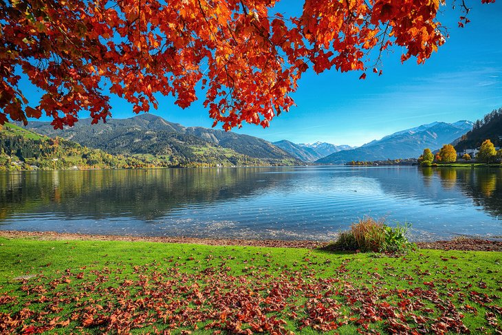 Fall colors along the shore of Zellersee