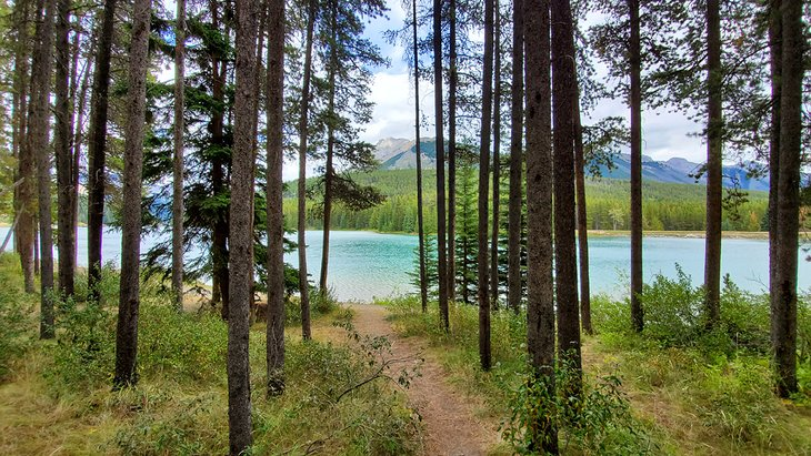 Two Jack Lake Campground (junto al lago)