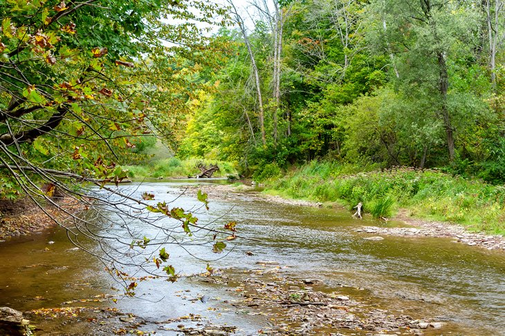 Twelve Mile Creek en el Parque Provincial Bronte Creek