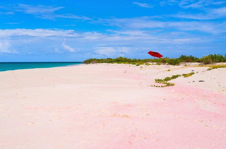 Playa rosa en Barbuda